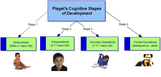 the different stages of the cognitive development of children A child's cognitive development during early childhood, which includes building   at distinguishing the building blocks of speech at 6 months are better at other.
